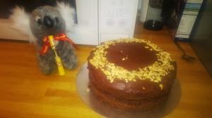 The finished cake and an awestruck koala.