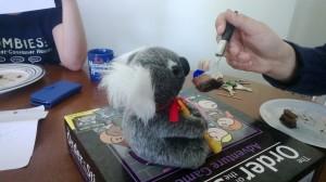 The proper care and feeding of koalas.