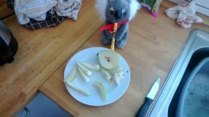 The Koala helps me prepare the salad. Pre-pear. Get it?