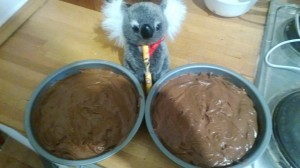 With a little Koala magic, these will become sponge cakes.