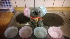 A Koala of many colours.