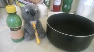 While I was rushing around with timings and temperatures, the Koala was just sitting there like a lemon.