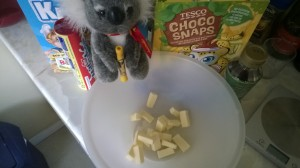The Koala felt this was one of my better ideas but I suspect he was just trying to butter me up.